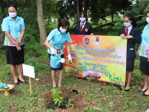 โครงการปลูกต้นไม้เฉลิมพระเกียรติ สมเด็จพระนางเจ้าสิริกิติ์